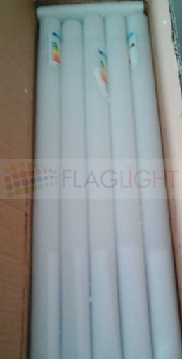 T8 LED Tube 120 cm - 25 pieces in box
