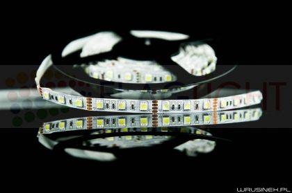 5050 - 60 LED/м двойно влагоз. в шлаух- БЯЛА