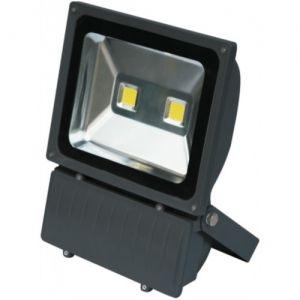 LED FLOOD LIGHT 50W COB